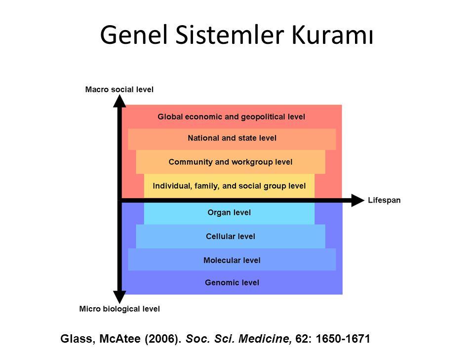 Genel Sistemler Kuramı Glass, McAtee (2006). Soc. Sci. Medicine, 62: 1650-1671