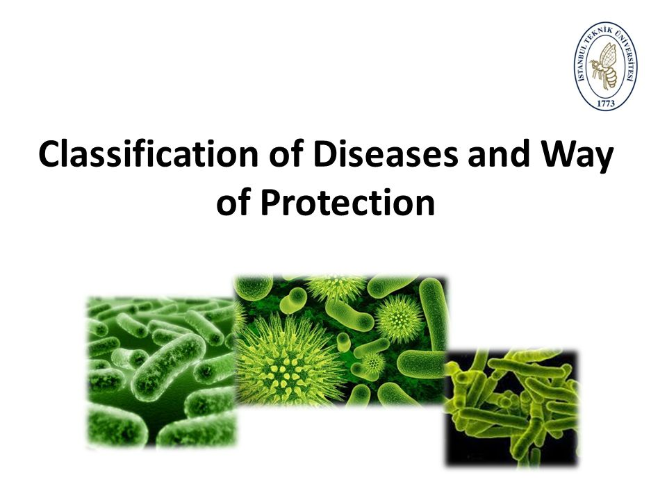 Classification of Diseases and Way of Protection
