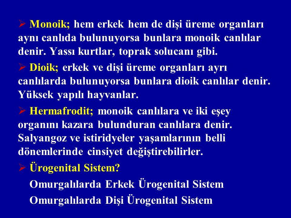  Monoik; hem erkek hem de dişi üreme organları aynı canlıda bulunuyorsa bunlara monoik canlılar denir. Yassı kurtlar, toprak solucanı gibi.  Dioik;