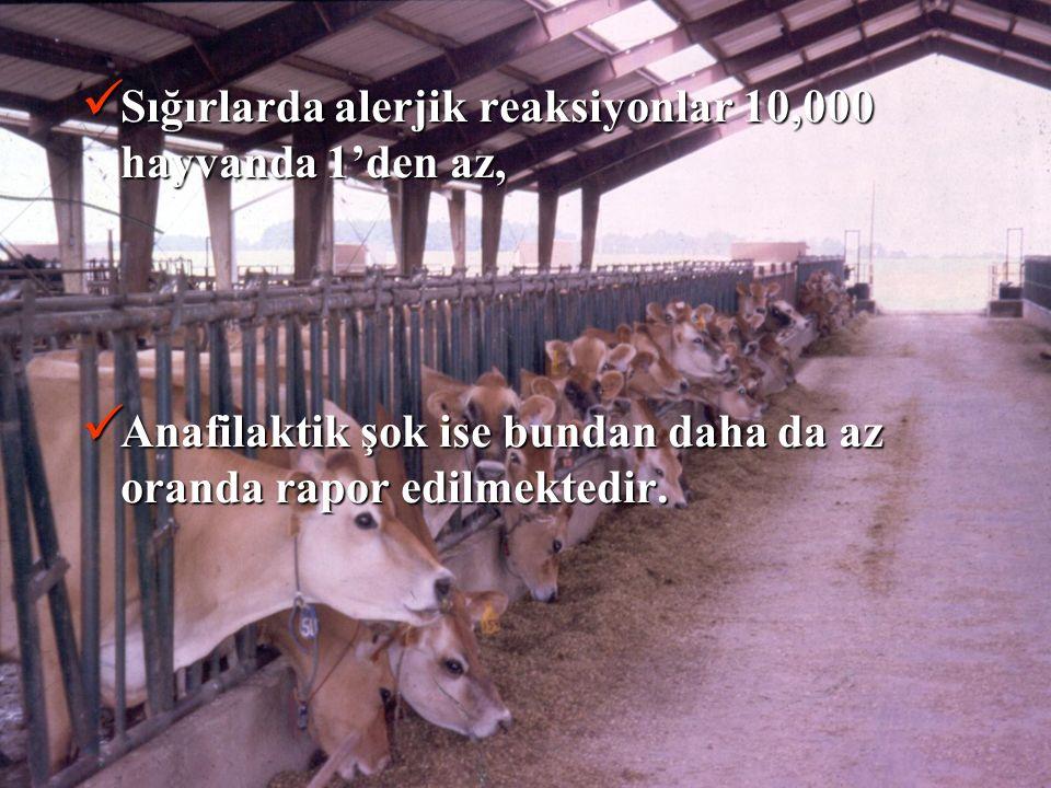 Sığırlarda alerjik reaksiyonlar 10,000 hayvanda 1'den az, Sığırlarda alerjik reaksiyonlar 10,000 hayvanda 1'den az, Anafilaktik şok ise bundan daha da az oranda rapor edilmektedir.