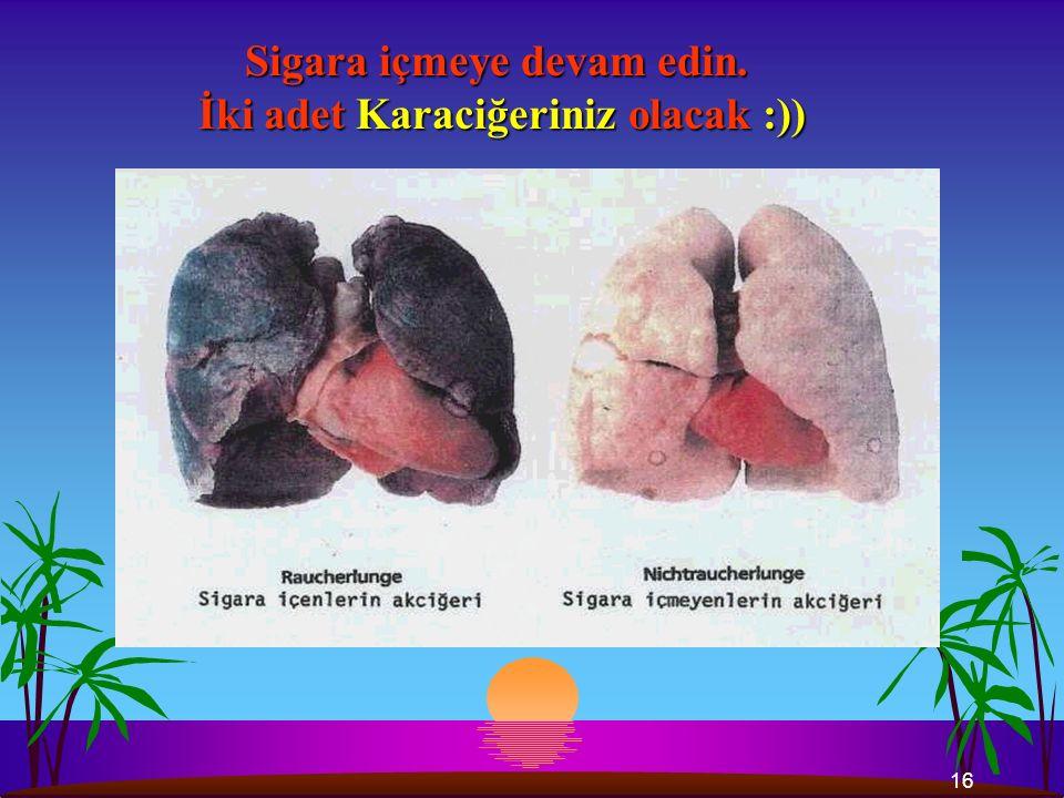 16 Sigara içmeye devam edin. İki adet Karaciğeriniz olacak :)) İki adet Karaciğeriniz olacak :))