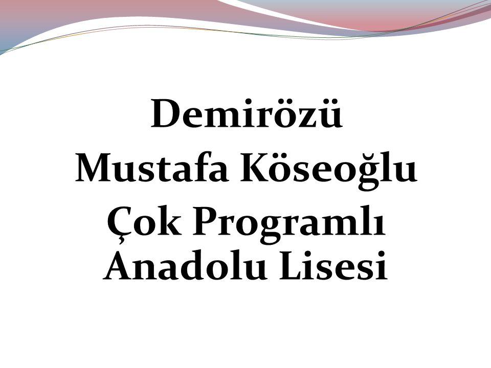Demirözü Mustafa Köseoğlu Çok Programlı Anadolu Lisesi