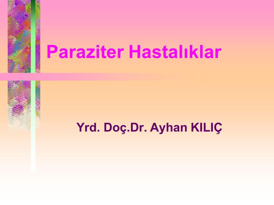 Paraziter Hastalıklar Yrd. Doç.Dr. Ayhan KILIÇ