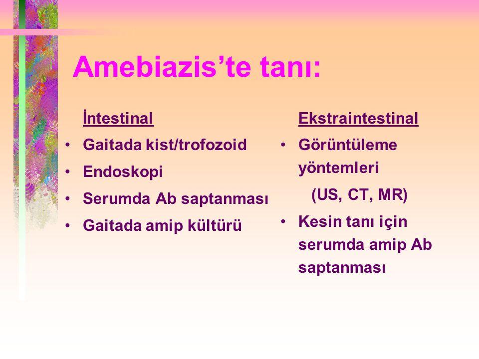 Amebiazis'te tanı: İntestinal Gaitada kist/trofozoid Endoskopi Serumda Ab saptanması Gaitada amip kültürü Ekstraintestinal Görüntüleme yöntemleri (US, CT, MR) Kesin tanı için serumda amip Ab saptanması