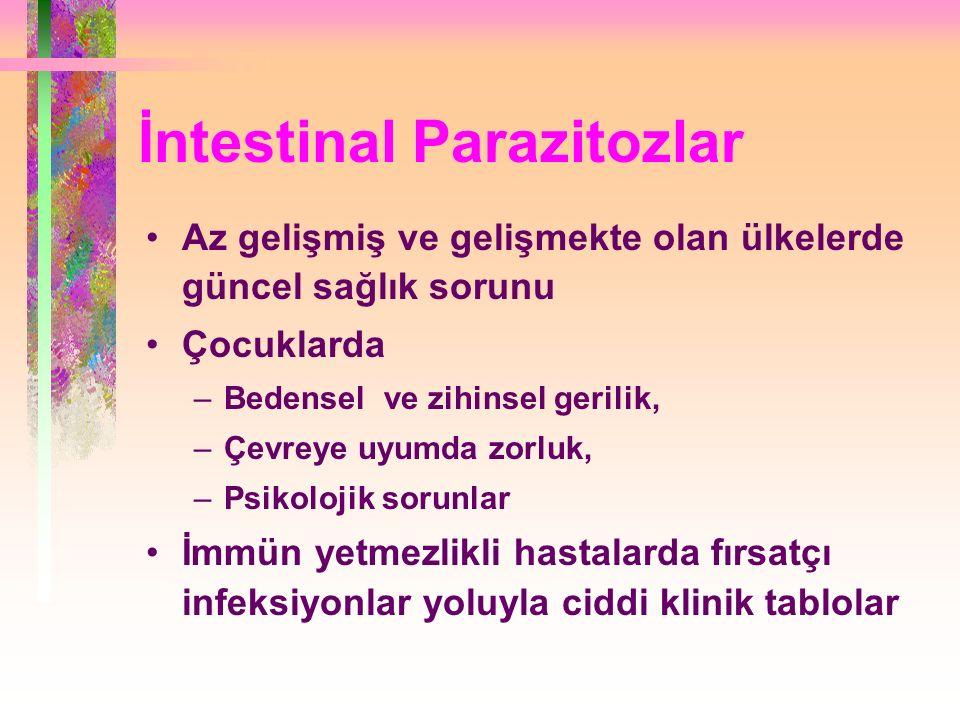 İntestinal Parazitozlar Az gelişmiş ve gelişmekte olan ülkelerde güncel sağlık sorunu Çocuklarda –Bedensel ve zihinsel gerilik, –Çevreye uyumda zorluk, –Psikolojik sorunlar İmmün yetmezlikli hastalarda fırsatçı infeksiyonlar yoluyla ciddi klinik tablolar