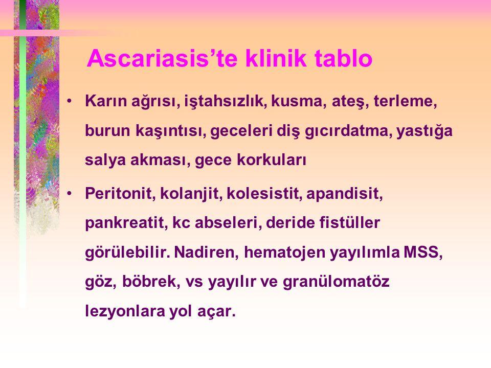 Ascariasis'te klinik tablo Karın ağrısı, iştahsızlık, kusma, ateş, terleme, burun kaşıntısı, geceleri diş gıcırdatma, yastığa salya akması, gece korkuları Peritonit, kolanjit, kolesistit, apandisit, pankreatit, kc abseleri, deride fistüller görülebilir.