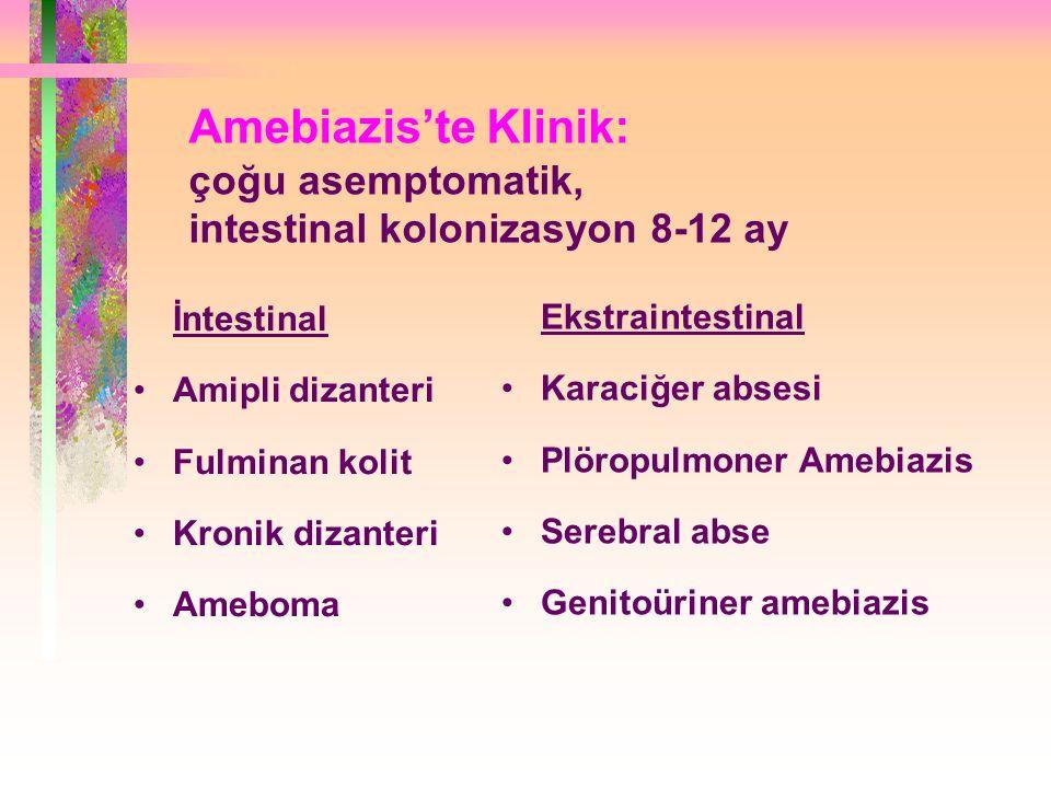 Amebiazis'te Klinik: çoğu asemptomatik, intestinal kolonizasyon 8-12 ay İntestinal Amipli dizanteri Fulminan kolit Kronik dizanteri Ameboma Ekstraintestinal Karaciğer absesi Plöropulmoner Amebiazis Serebral abse Genitoüriner amebiazis