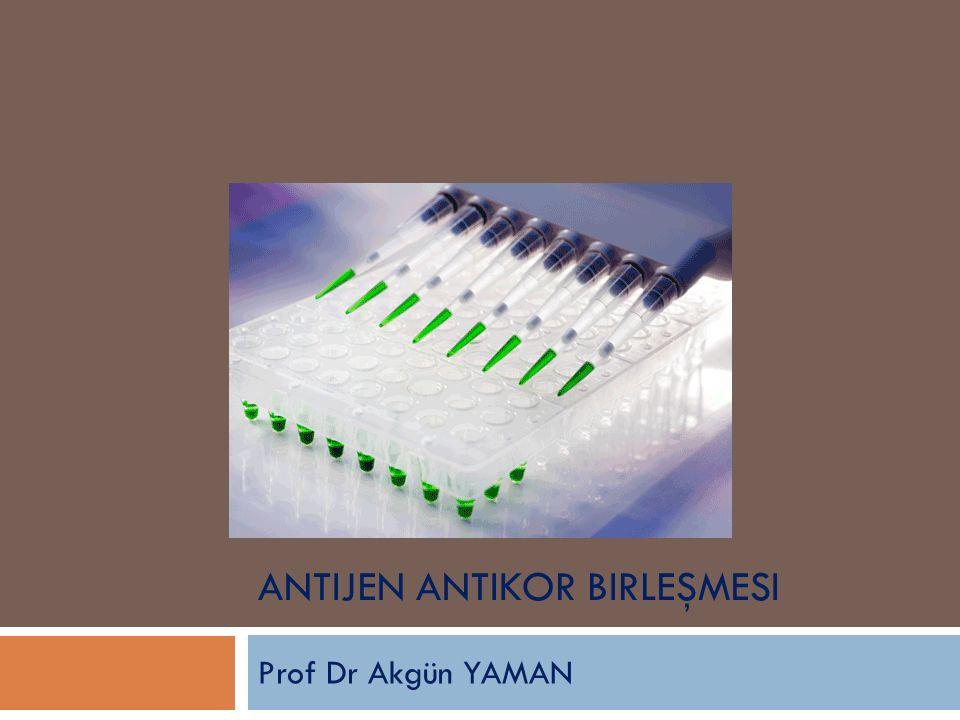 ANTIJEN ANTIKOR BIRLEŞMESI Prof Dr Akgün YAMAN