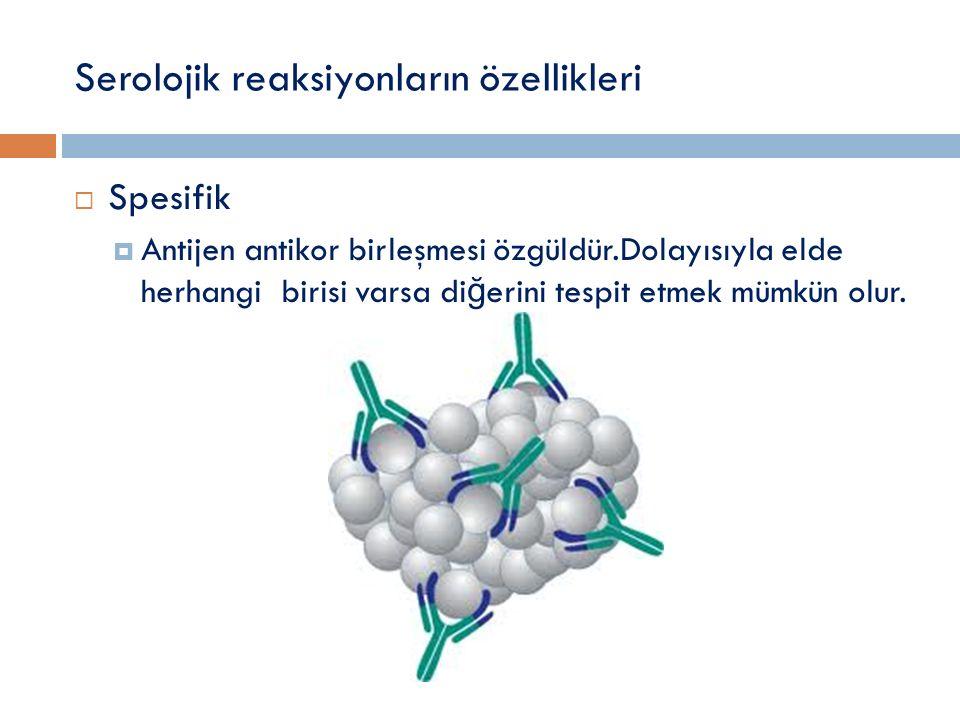 Serolojik reaksiyonların özellikleri  Spesifik  Antijen antikor birleşmesi özgüldür.Dolayısıyla elde herhangi birisi varsa di ğ erini tespit etmek m