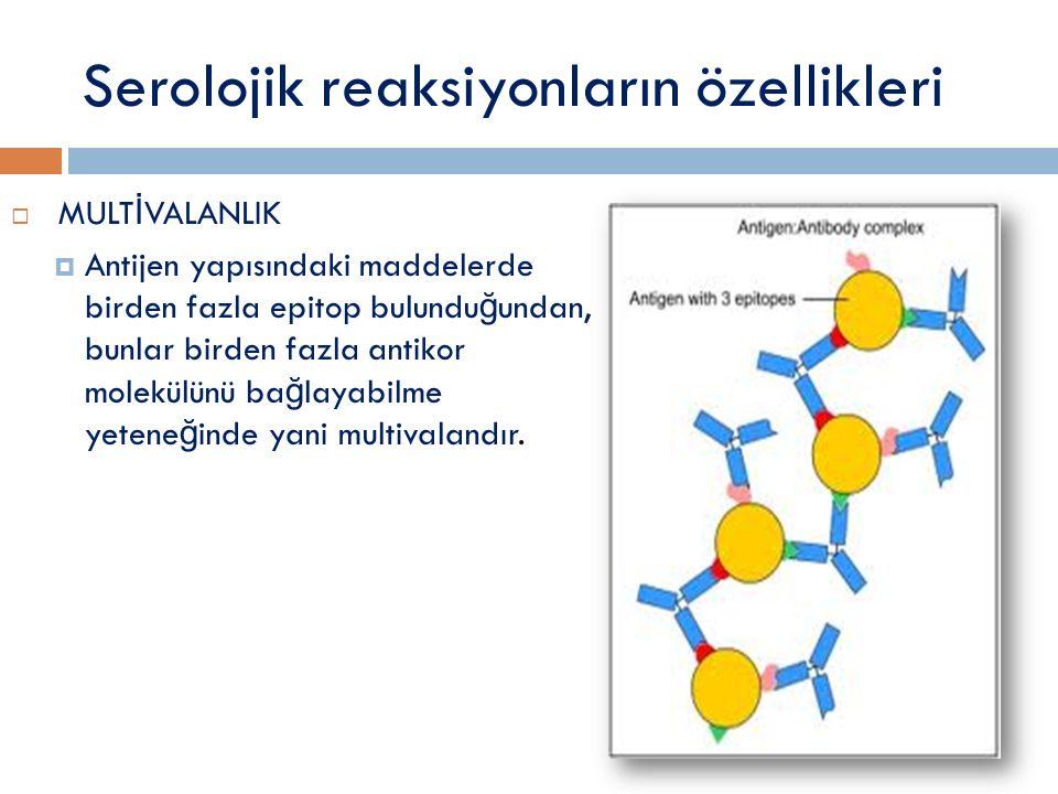Serolojik reaksiyonların özellikleri  MULT İ VALANLIK  Antijen yapısındaki maddelerde birden fazla epitop bulundu ğ undan, bunlar birden fazla antik