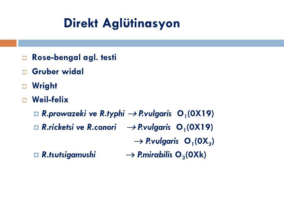Direkt Aglütinasyon  Rose-bengal agl. testi  Gruber widal  Wright  Weil-felix  R.prowazeki ve R.typhi  P.vulgaris O 1 (0X19)  R.ricketsi ve R.c