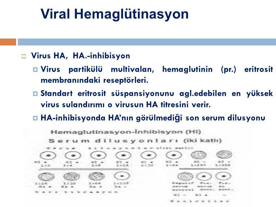 Viral Hemaglütinasyon  Virus HA, HA.-inhibisyon  Virus partikülü multivalan, hemaglutinin (pr.) eritrosit membranındaki reseptörleri.  Standart eri