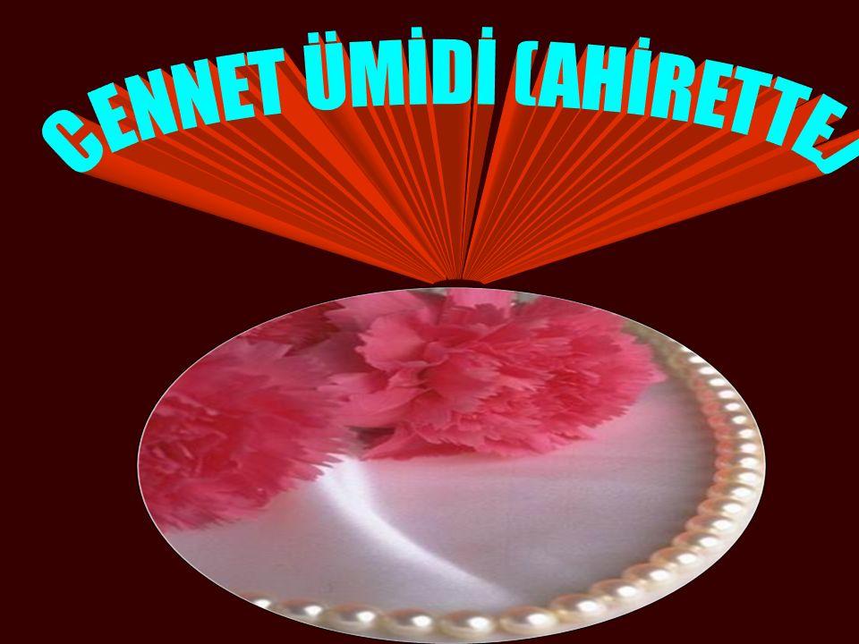 Sunabihi (Rah Aly.) anlatıyor: Ölüm döşeğinde yatmakta olan Ubade b.