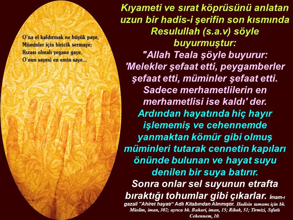 Kıyameti ve sırat köprüsünü anlatan uzun bir hadis-i şerifin son kısmında Resulullah (s.a.v) söyle buyurmuştur: Allah Teala şöyle buyurur: Melekler şefaat etti, peygamberler şefaat etti, müminler şefaat etti.