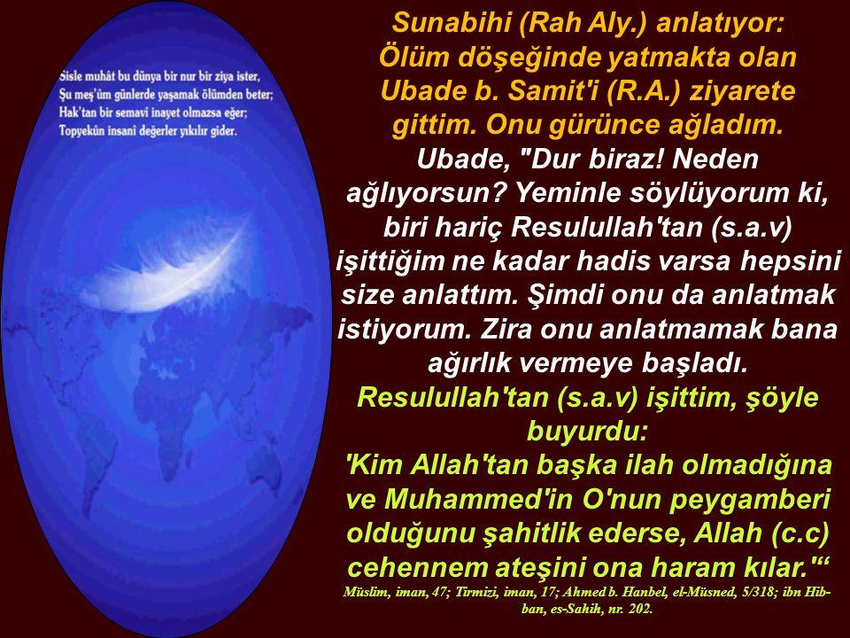 Ebu Said-i Hudri (r.a) naklediyor: Resulullah (s.a.v) buyurdu ki: Şayet cennet ehlinden biri, çocuk sahibi olmak isterse, ona dilediği güzellikte ve surette bir evlat verilir.