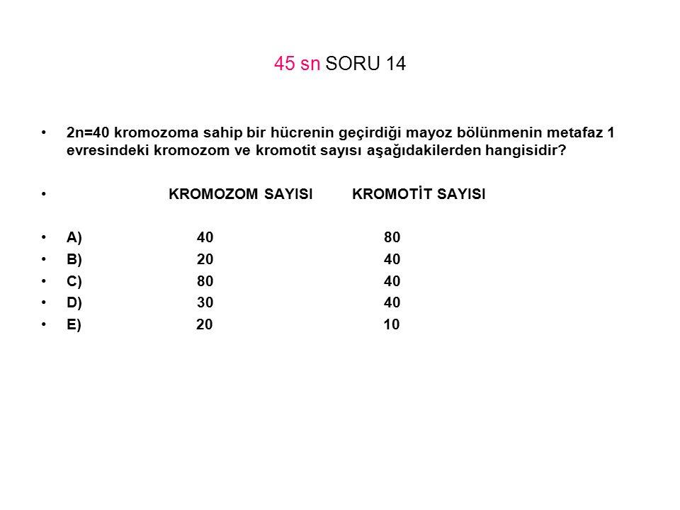 45 sn SORU 14 2n=40 kromozoma sahip bir hücrenin geçirdiği mayoz bölünmenin metafaz 1 evresindeki kromozom ve kromotit sayısı aşağıdakilerden hangisid