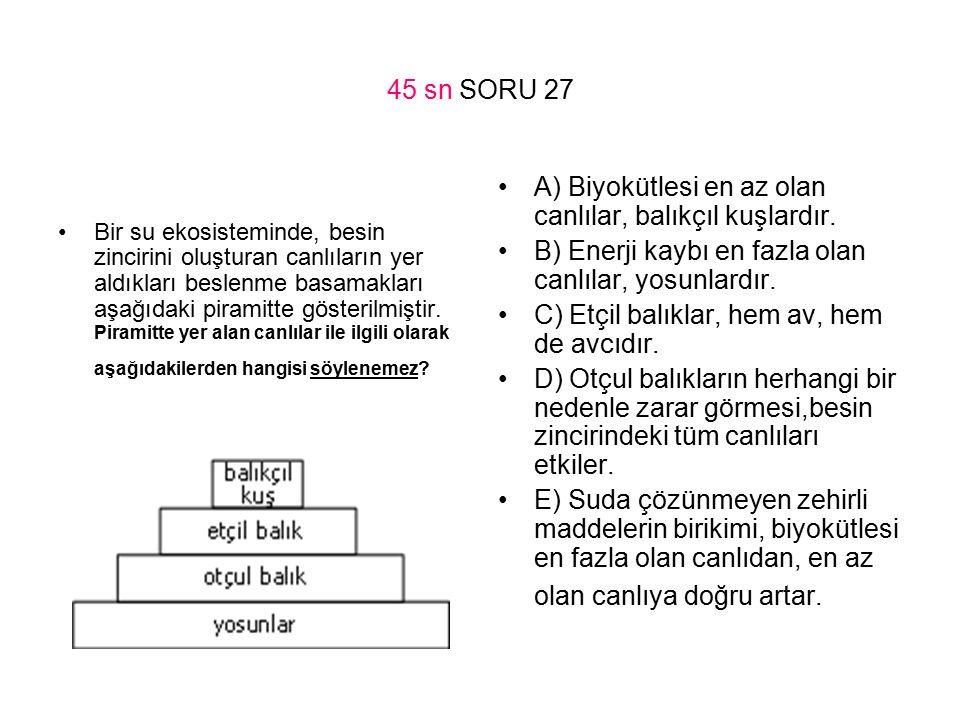 45 sn SORU 27 Bir su ekosisteminde, besin zincirini oluşturan canlıların yer aldıkları beslenme basamakları aşağıdaki piramitte gösterilmiştir. Pirami