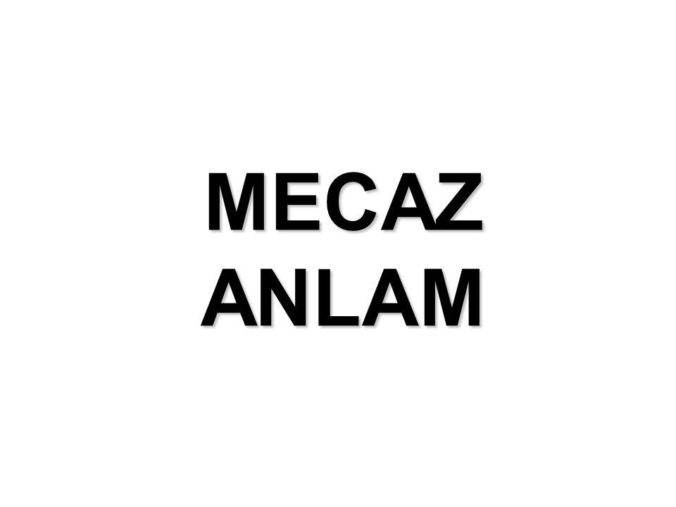 MECAZ ANLAM