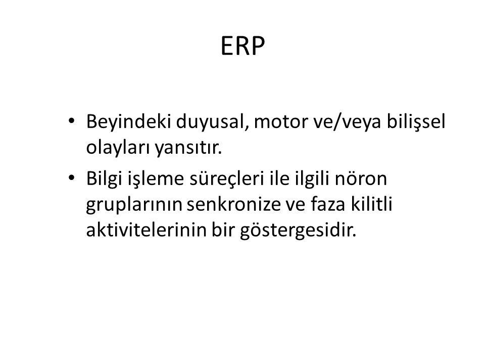 ERP Beyindeki duyusal, motor ve/veya bilişsel olayları yansıtır. Bilgi işleme süreçleri ile ilgili nöron gruplarının senkronize ve faza kilitli aktivi