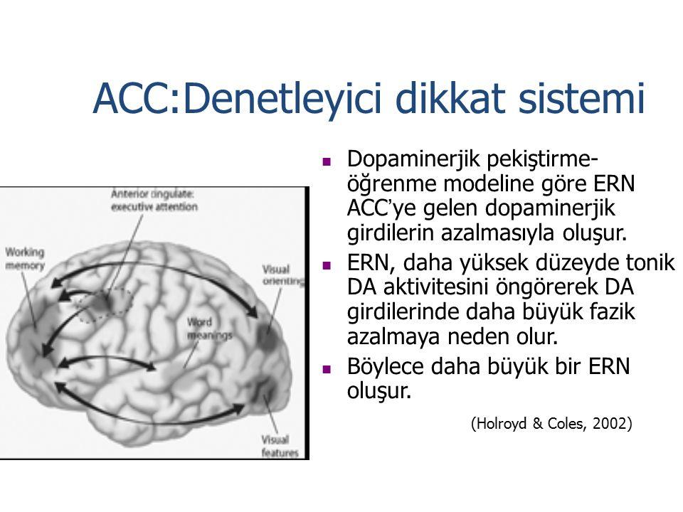 ACC:Denetleyici dikkat sistemi Dopaminerjik pekiştirme- öğrenme modeline göre ERN ACC ' ye gelen dopaminerjik girdilerin azalmasıyla oluşur. ERN, daha