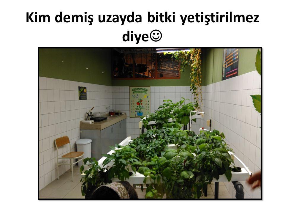 Kim demiş uzayda bitki yetiştirilmez diye
