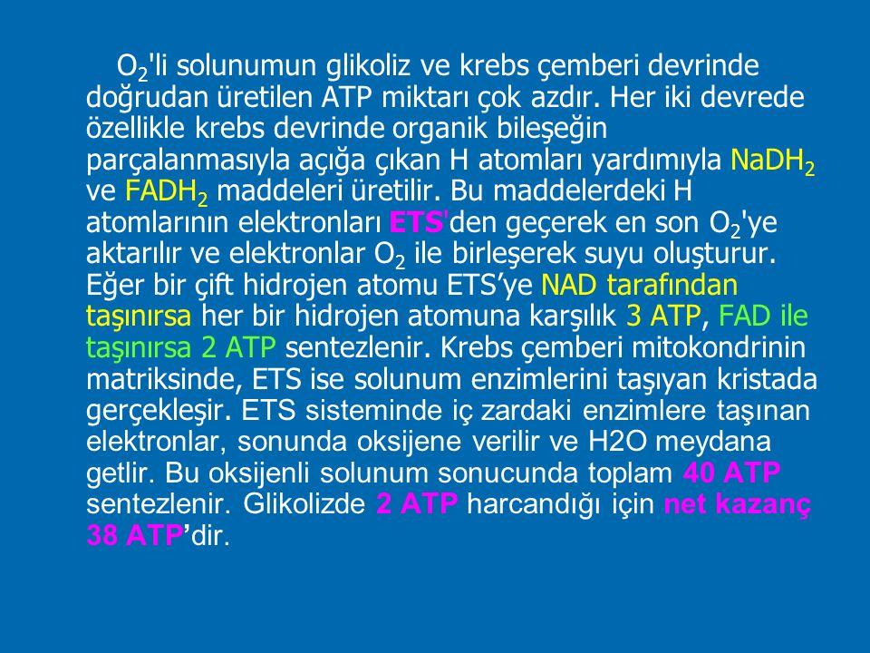 O 2 'li solunumun glikoliz ve krebs çemberi devrinde doğrudan üretilen ATP miktarı çok azdır. Her iki devrede özellikle krebs devrinde organik bileşeğ