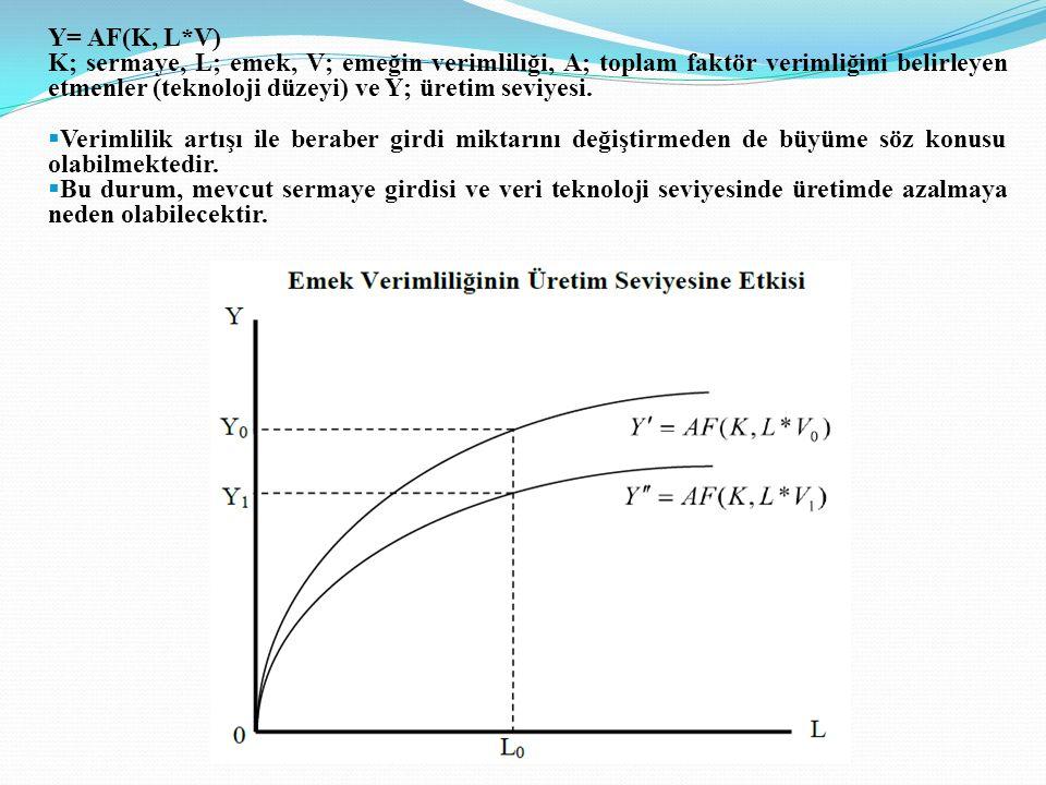 Y= AF(K, L*V) K; sermaye, L; emek, V; emeğin verimliliği, A; toplam faktör verimliğini belirleyen etmenler (teknoloji düzeyi) ve Y; üretim seviyesi.