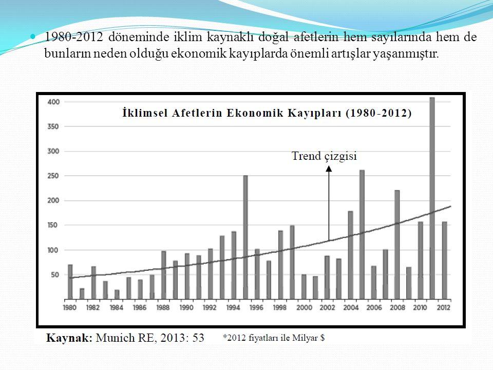 1980-2012 döneminde iklim kaynaklı doğal afetlerin hem sayılarında hem de bunların neden olduğu ekonomik kayıplarda önemli artışlar yaşanmıştır.