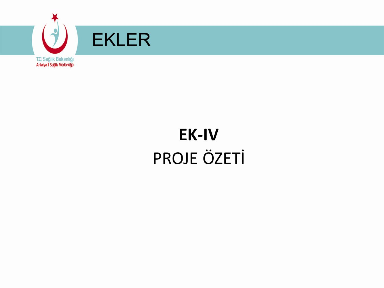 EKLER EK-IV PROJE ÖZETİ
