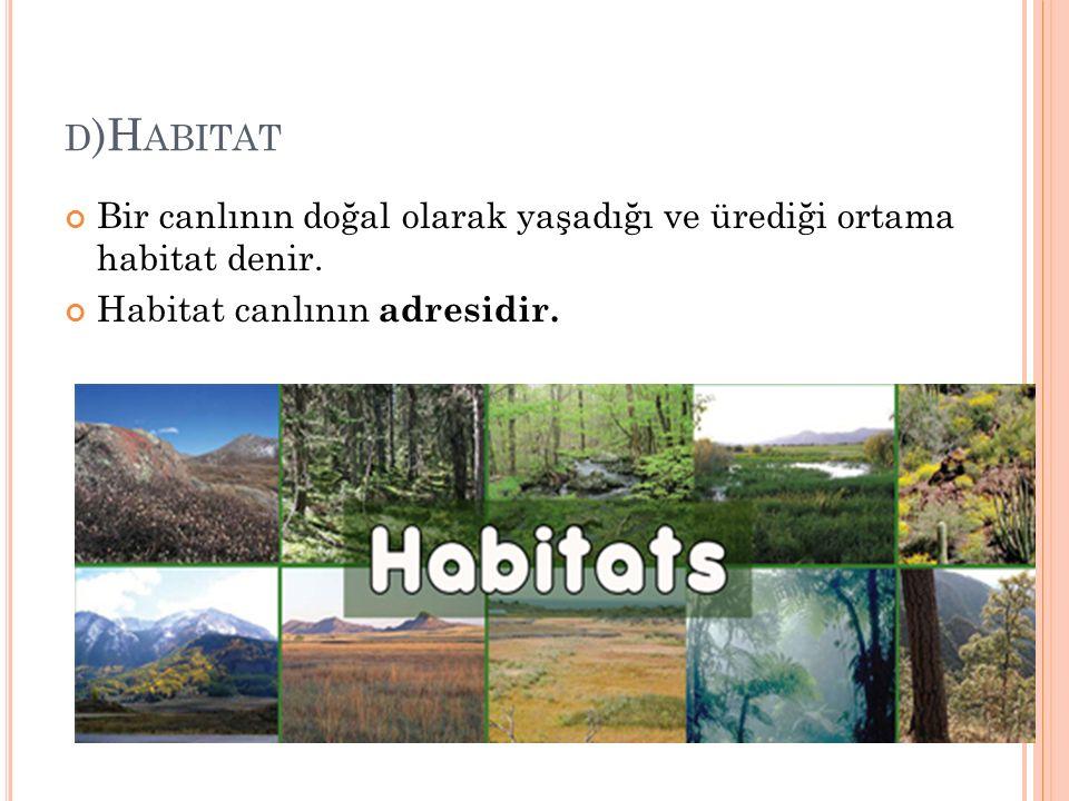 D )H ABITAT Bir canlının doğal olarak yaşadığı ve ürediği ortama habitat denir. Habitat canlının adresidir.