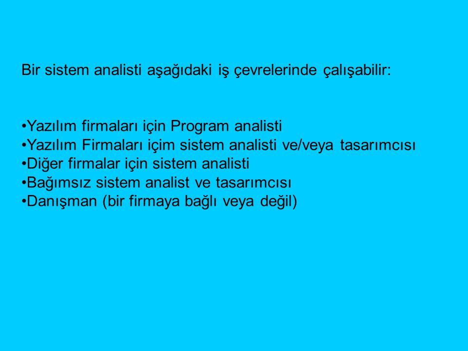 Bir sistem analisti aşağıdaki iş çevrelerinde çalışabilir: Yazılım firmaları için Program analisti Yazılım Firmaları içim sistem analisti ve/veya tasarımcısı Diğer firmalar için sistem analisti Bağımsız sistem analist ve tasarımcısı Danışman (bir firmaya bağlı veya değil)