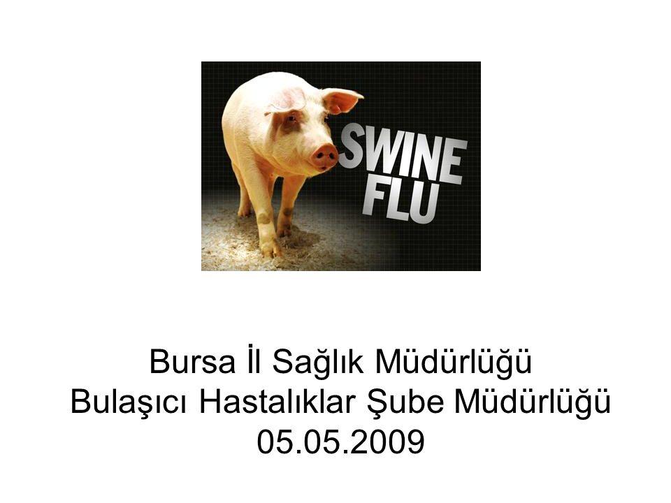 Bursa İl Sağlık Müdürlüğü Bulaşıcı Hastalıklar Şube Müdürlüğü 05.05.2009