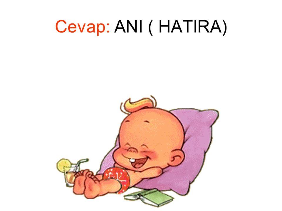 Cevap: ANI ( HATIRA)