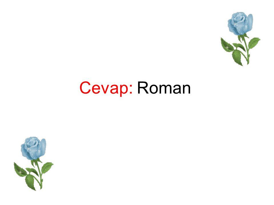 Cevap: Roman