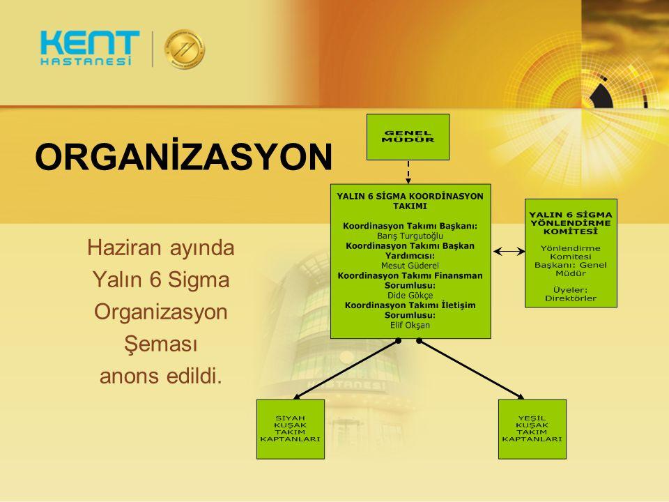 ORGANİZASYON Haziran ayında Yalın 6 Sigma Organizasyon Şeması anons edildi.