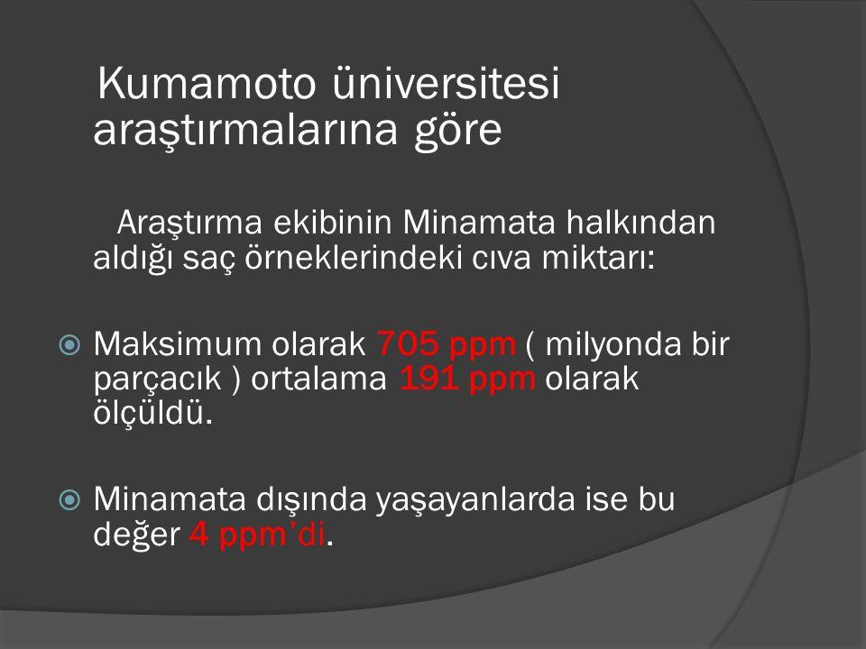 Kumamoto üniversitesi araştırmalarına göre Araştırma ekibinin Minamata halkından aldığı saç örneklerindeki cıva miktarı:  Maksimum olarak 705 ppm ( milyonda bir parçacık ) ortalama 191 ppm olarak ölçüldü.
