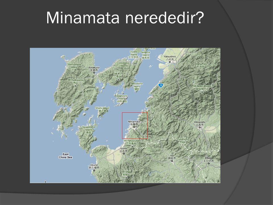 Minamata nerededir