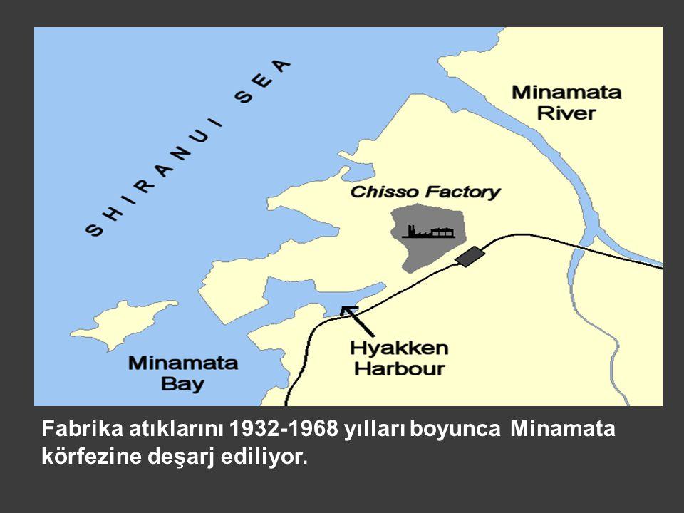 Fabrika atıklarını 1932-1968 yılları boyunca Minamata körfezine deşarj ediliyor.