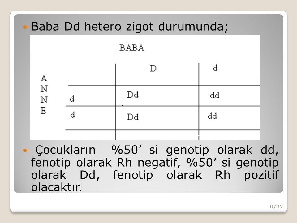 Baba Dd hetero zigot durumunda; Çocukların %50' si genotip olarak dd, fenotip olarak Rh negatif, %50' si genotip olarak Dd, fenotip olarak Rh pozitif olacaktır.