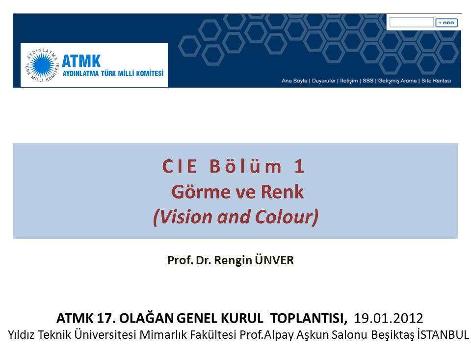 19/01/2012 tarihli ATMK – CIE BİLGİLENDİRME TOPLANTISI 2 / 11 Görev Tanımı: Işığa görsel tepkiler üstünde çalışmak ve renksel geriverim, renkölçme (kolorimetri), ışıkölçme (fotometri), görsel performans, ışık ve aydınlatmanın görsel değerlendirmesi ile ilintili modellerin, prosedürlerin ve görsel tepki fonksiyonlarının standartlarını belirlemek.