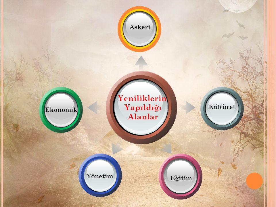 Yeniliklerin Yapıldığı Alanlar Kültürel Eğitim Ekonomik Yönetim Askeri