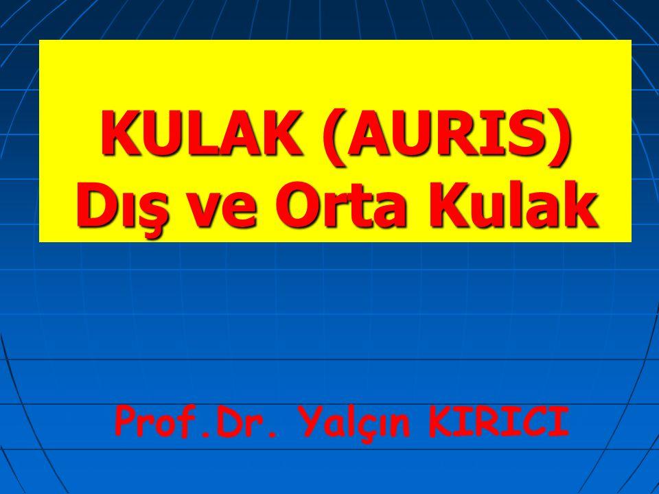 2 Kulak (Auris) İşitme ve denge organı olan kulak üç bölümde incelenir: İşitme ve denge organı olan kulak üç bölümde incelenir: Auris externa (dış kulak)Auris externa (dış kulak) Auris media (orta kulak)Auris media (orta kulak) Auris interna (iç kulak)Auris interna (iç kulak)
