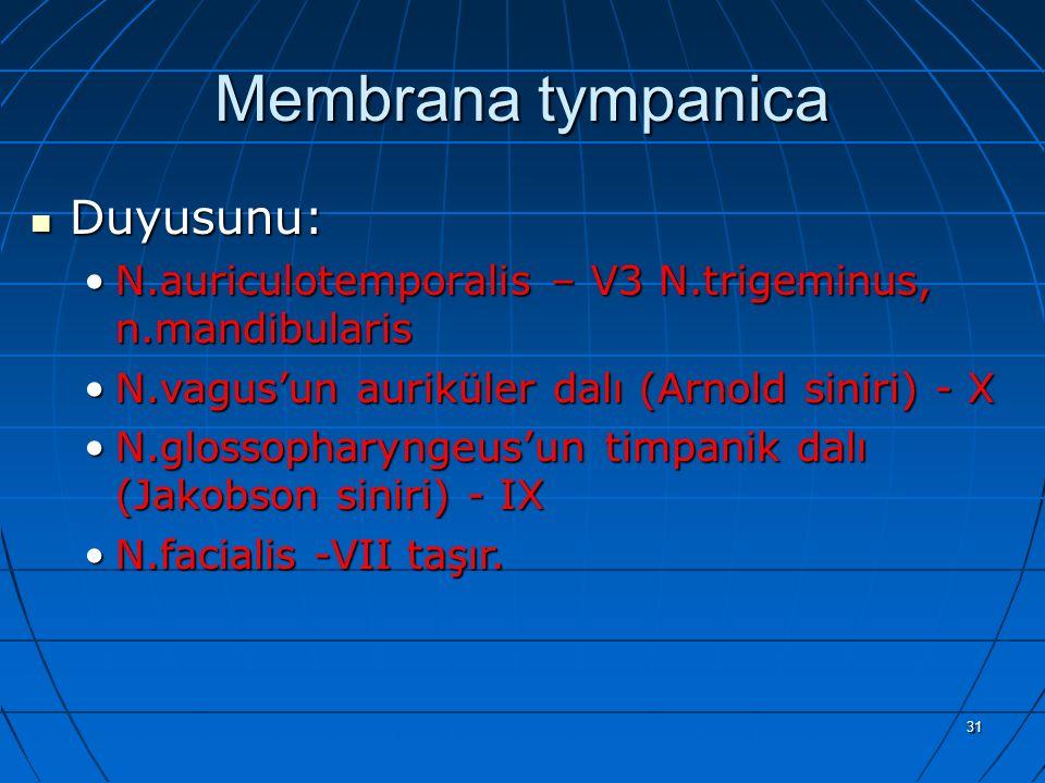 31 Membrana tympanica Duyusunu: Duyusunu: N.auriculotemporalis – V3 N.trigeminus, n.mandibularisN.auriculotemporalis – V3 N.trigeminus, n.mandibularis