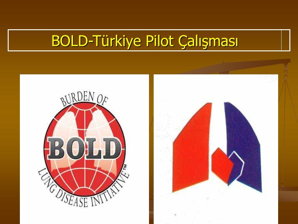 BOLD-Türkiye Pilot Çalışması