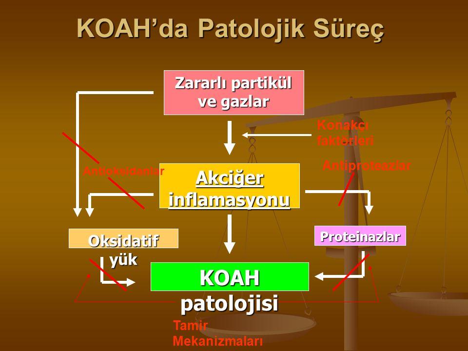 Zararlı partikül ve gazlar Akciğer inflamasyonu KOAH patolojisi Konakçı faktörleriProteinazlar Oksidatif yük Antioksidanlar Antiproteazlar Tamir Mekanizmaları KOAH'da Patolojik Süreç