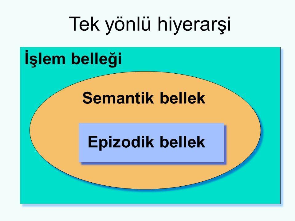 Tek yönlü hiyerarşi İşlem belleği Epizodik bellek Semantik bellek