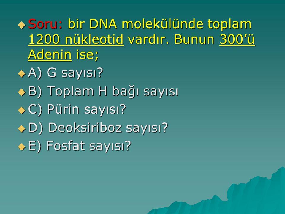  Soru: bir DNA molekülünde toplam 1200 nükleotid vardır. Bunun 300'ü Adenin ise;  A) G sayısı?  B) Toplam H bağı sayısı  C) Pürin sayısı?  D) Deo