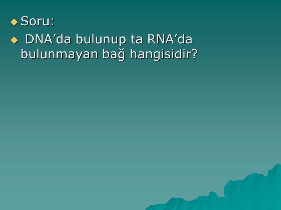  Soru:  DNA'da bulunup ta RNA'da bulunmayan bağ hangisidir?