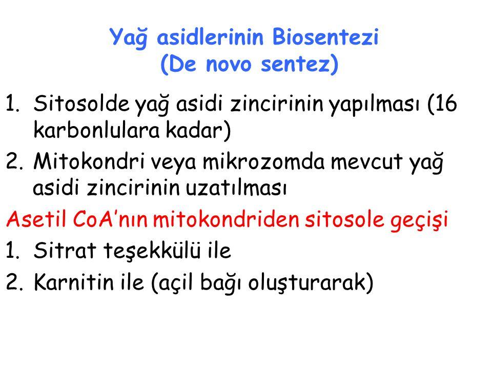 Yağ asidlerinin Biosentezi (De novo sentez) 1.Sitosolde yağ asidi zincirinin yapılması (16 karbonlulara kadar) 2.Mitokondri veya mikrozomda mevcut yağ