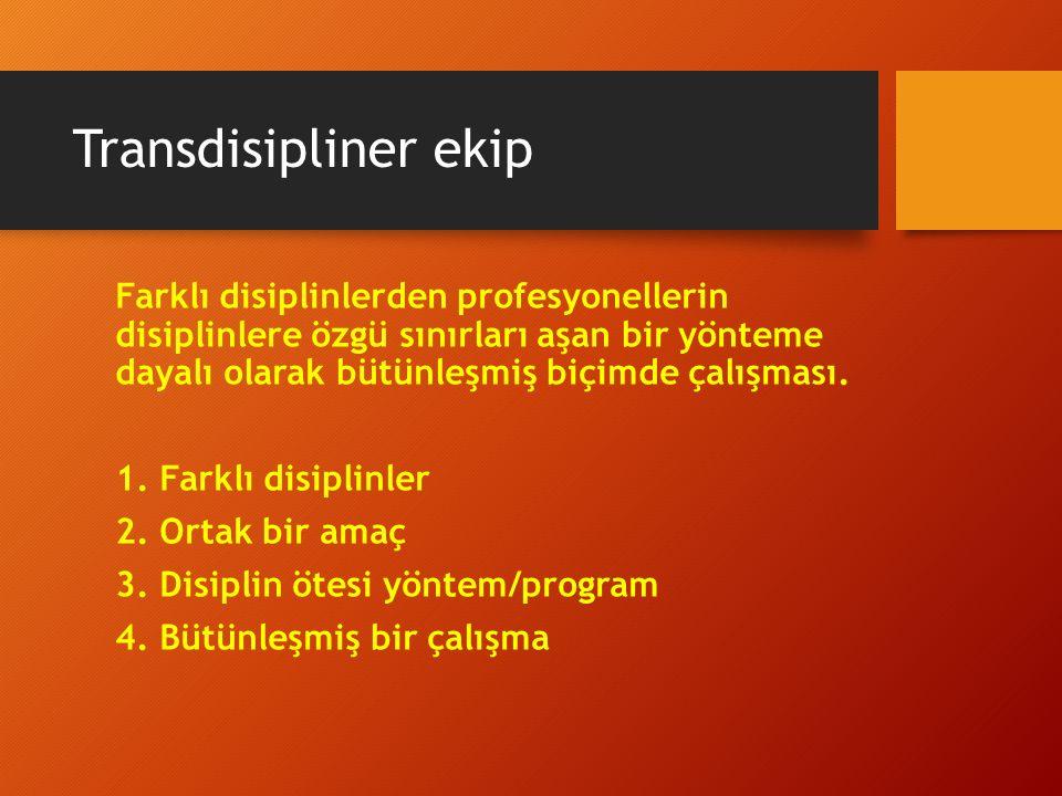 Transdisipliner ekip Farklı disiplinlerden profesyonellerin disiplinlere özgü sınırları aşan bir yönteme dayalı olarak bütünleşmiş biçimde çalışması.